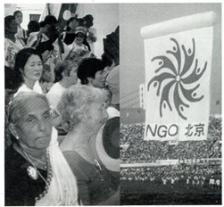 4th Annual U.N. Conference on Women, Beijing, China, 1995.