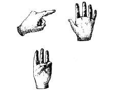 """Figura 31. Contando sulle dita, indichiamo ogni dito a turno come """"uno"""" esemplare]."""