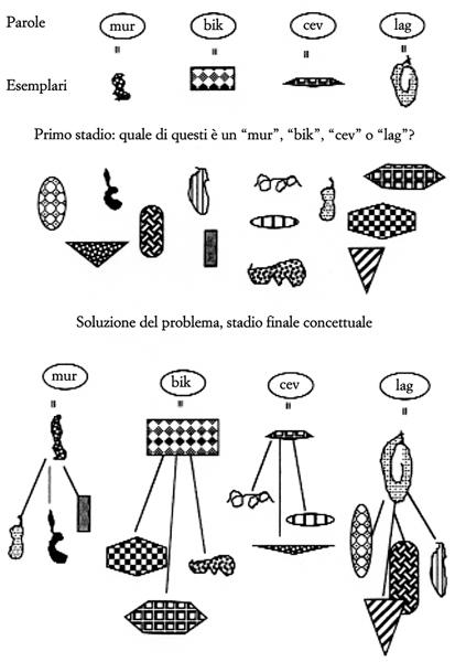 Figura 6. Visualizzando l'esperimento di Vygotsky.