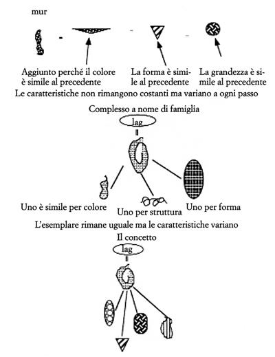 Figura 7. Visualizzando l'esperimento di Vygotsky.